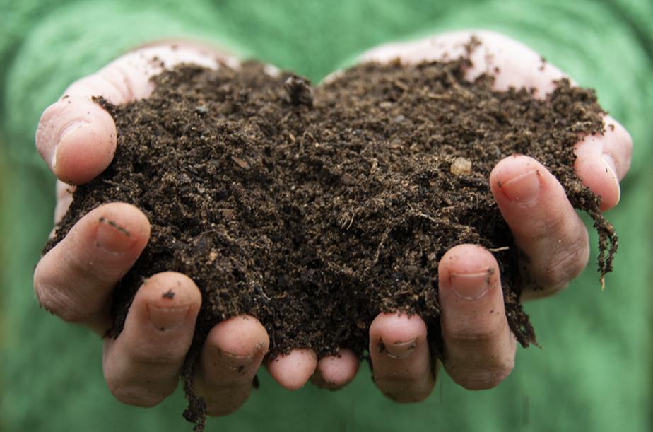 Digging Deep into Soil | Kelly Orzel