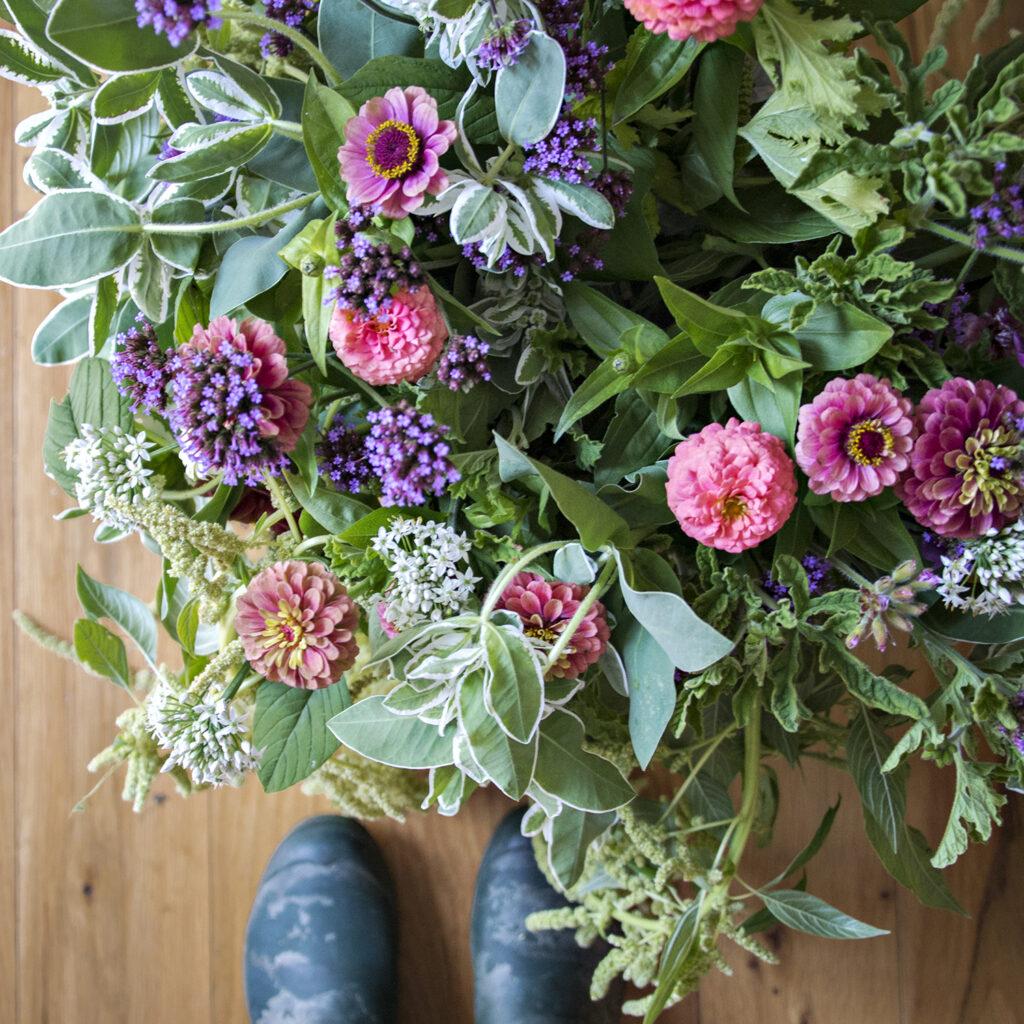 Flowers from the Garden | Kelly Orzel