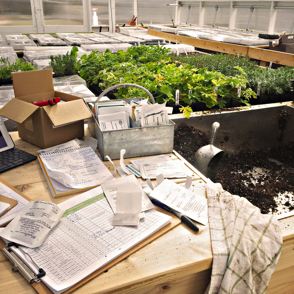 Sowing Seeds and Keeping Records | Kelly Orzel
