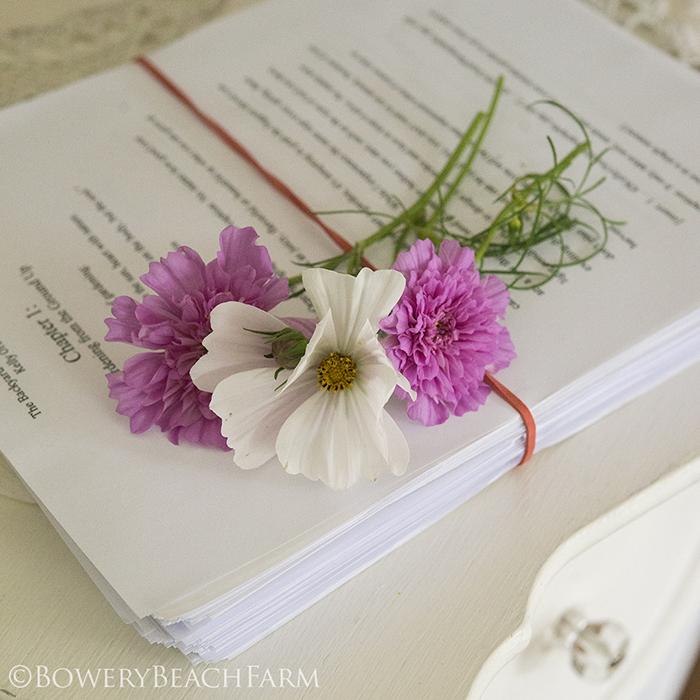 Writing The Backyard Gardener book | Kelly Orzel