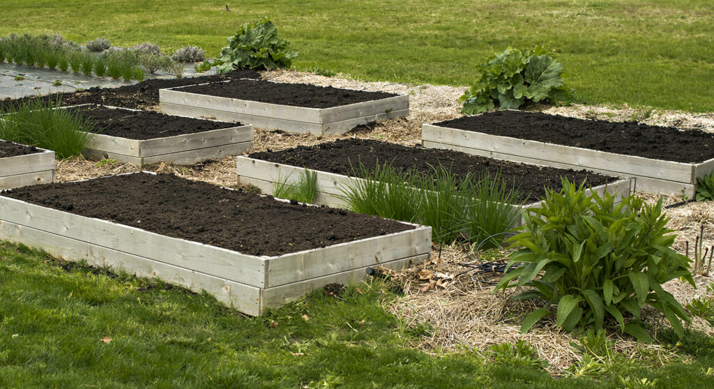 Raised Beds practicing No-Dig | Kelly Orzel