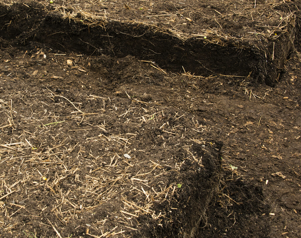 No-Dig and Compost In the Garden | Kelly Orzel