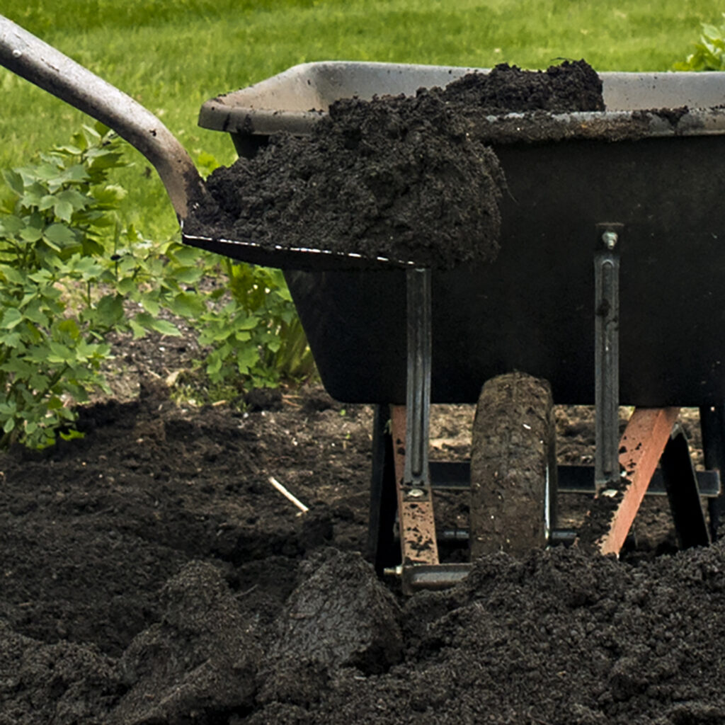 Surf and Turf Compost | Kelly Orzel