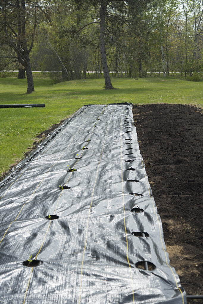 Soil Myths and Prepping the Garden | Kelly Orzel